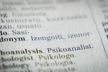 do you use translation or interpreter services